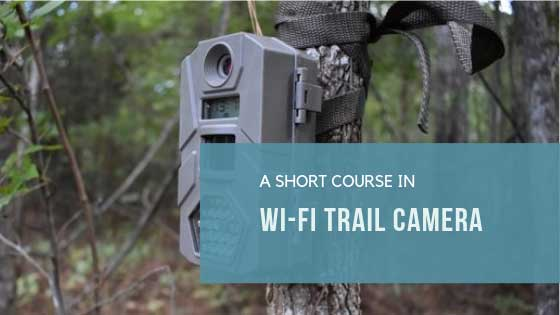 Wi-Fi Trail Camera