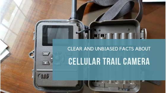 about Cellular Trail Camera