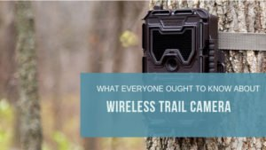 What Everyone Ought To Know About Wireless Trail Camera