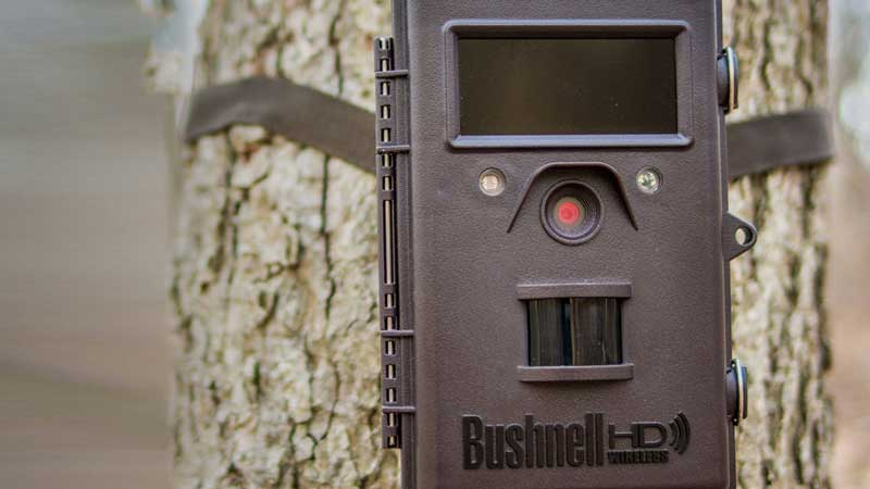 Wireless-Trail-Camera
