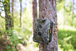 Trail Camera Features
