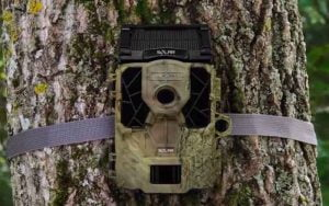 Stealth Cam 14-Megapixel 45 No-Glo IR Trail Camera