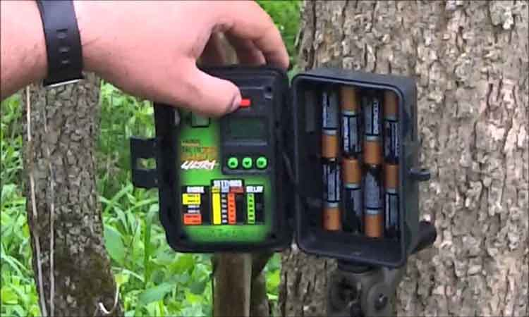 Primos Trail Camera Reviews