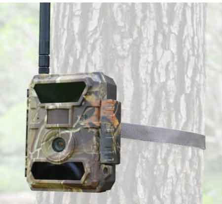 3G Bigfoot Trail Camera
