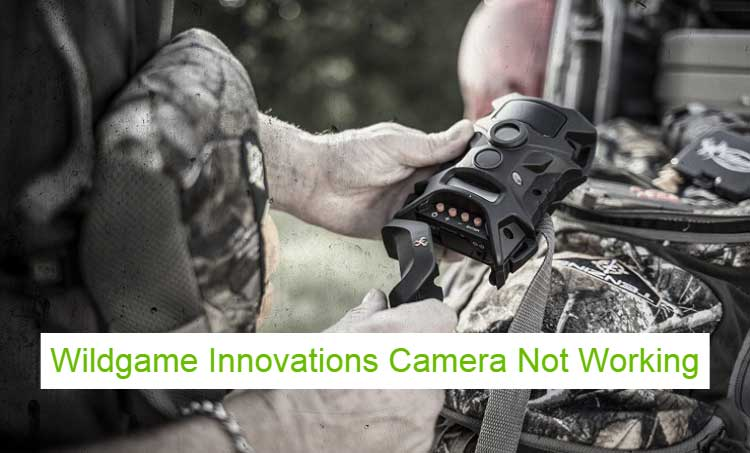 Wildgame Innovations Camera Not Working